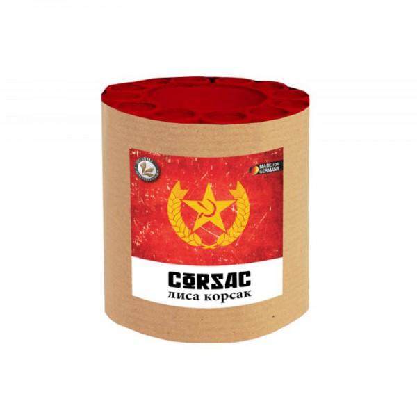 Corsac